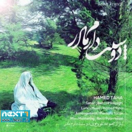 حامد طاها - مادر