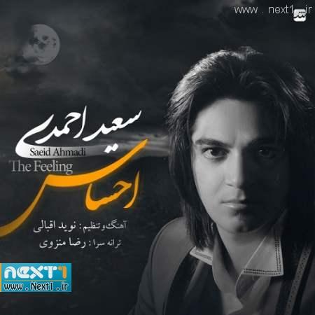 سعید احمدی - احساس