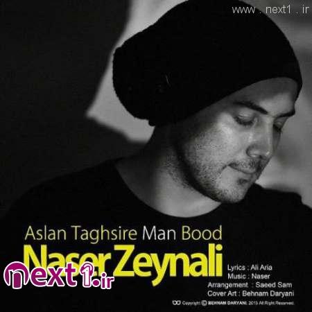 ناصر زینلی - اصلا تقصیر من بود