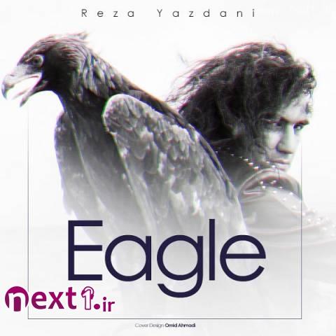رضا یزدانی - عقاب