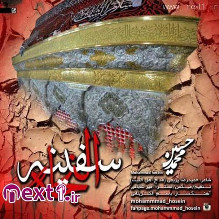 محمد حسین - سفینه النجاه