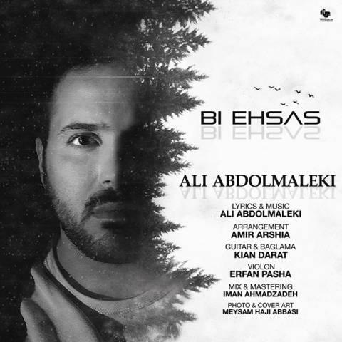 علی عبدالمالکی - بی احساس