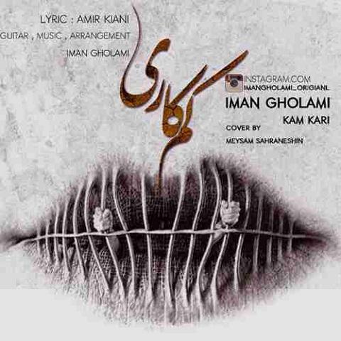 ImanGholami-Kamkari