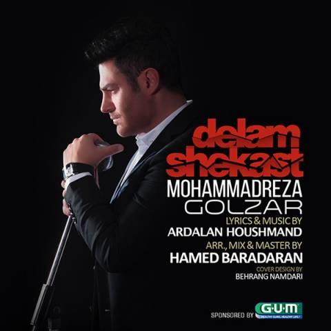 محمدرضا گلزار - دلم شکست