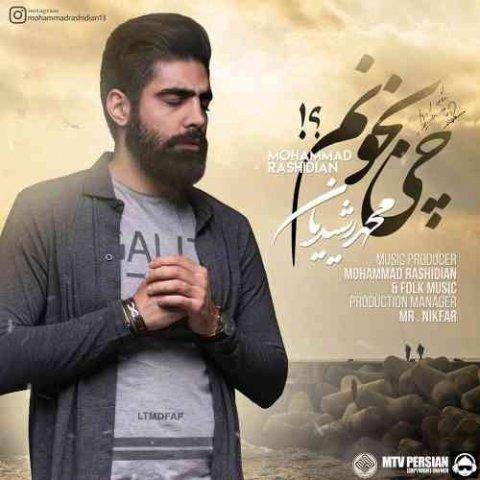 محمد رشیدیان - چی بخونم