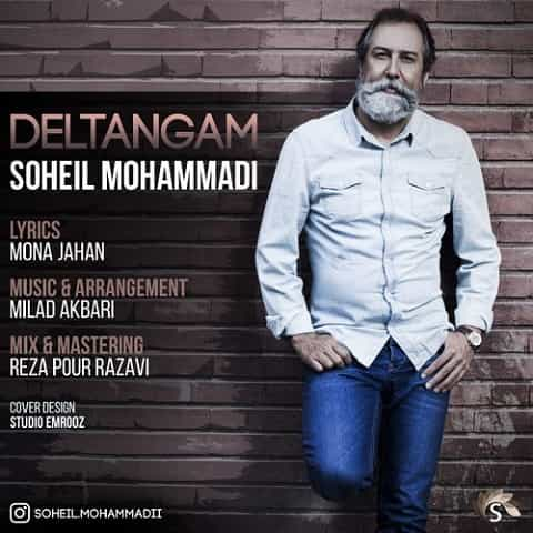 سهیل محمدی - دلتنگم
