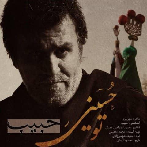 حبیب - تو حسینی