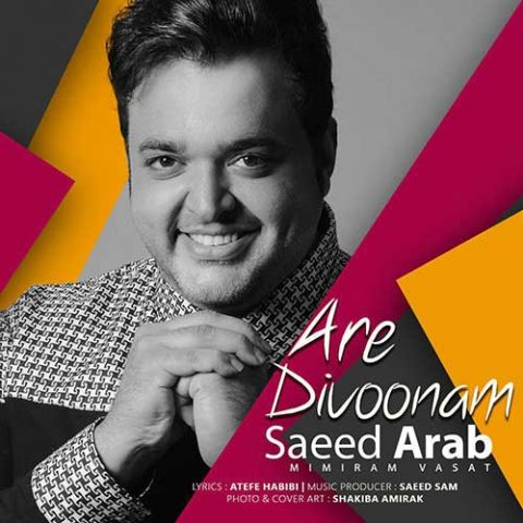 سعید عرب - آره دیوونم