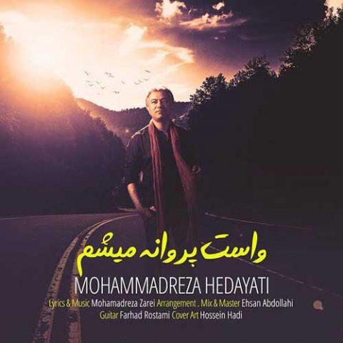 محمدرضا هدایتی - واست پروانه میشم