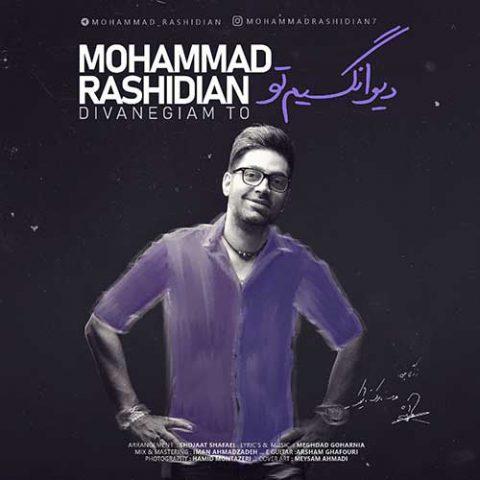محمد رشیدیان - دیوانگیم تو